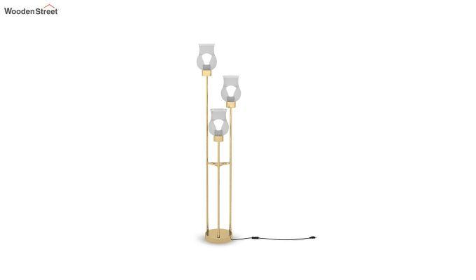 Caltrop Metal Floor Lamp-2