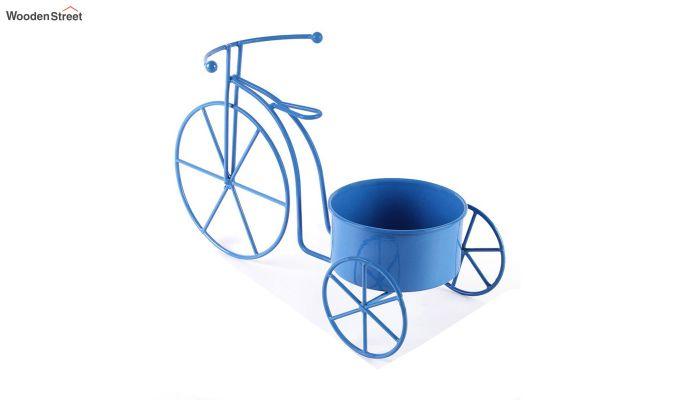 Blue Cyclo Planter-3