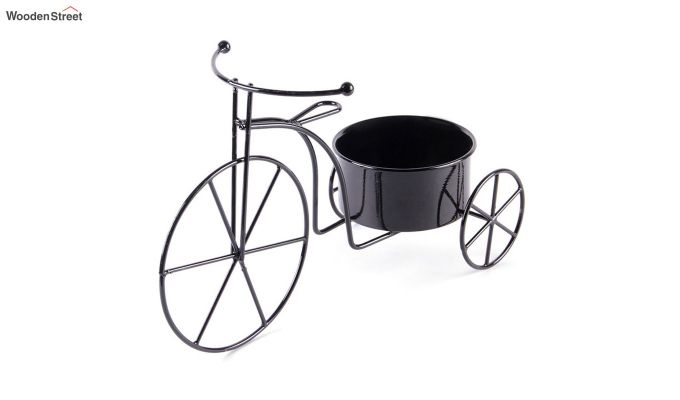 Coal Cyclo Planter-2
