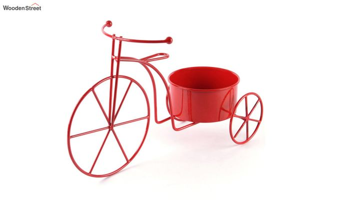 Scarlet Cyclo Planter-2