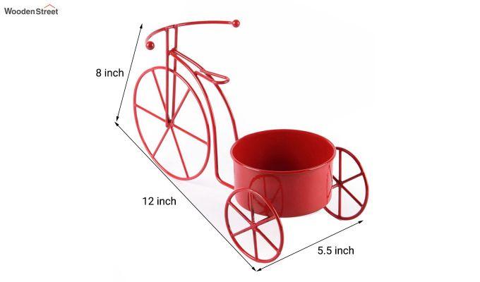 Scarlet Cyclo Planter-3