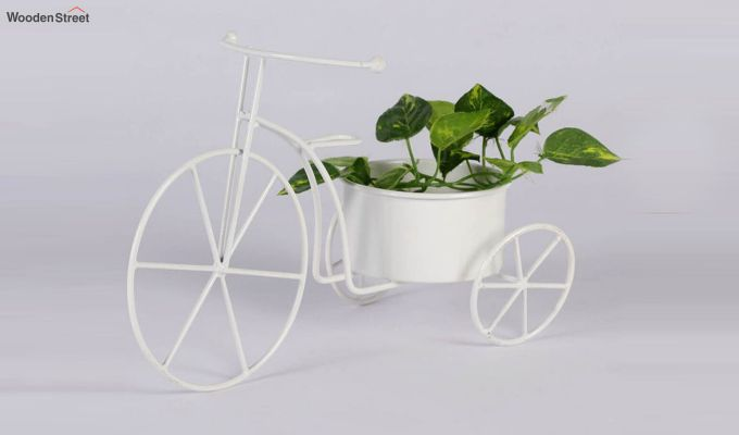 White Cyclo Planter-2