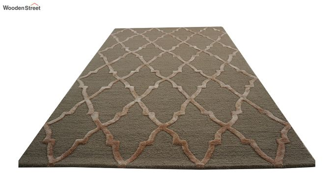 Brown Chevron Pattern Hand Tufted Wool & Viscose Carpet - 6 x 4 Feet-6