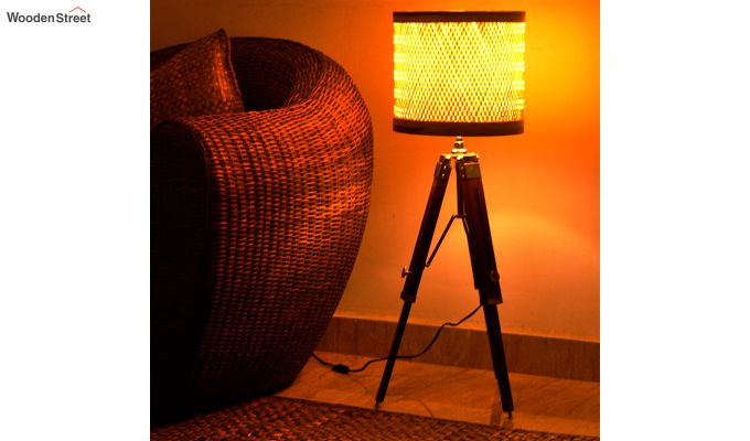 Decorative Tripod Floor Lamp-1