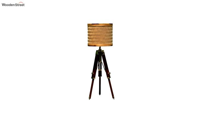 Decorative Tripod Floor Lamp-3