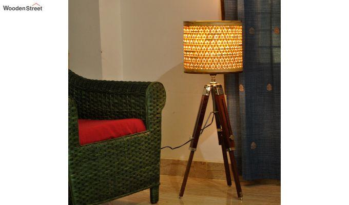 Starnet Tripod Floor Lamp-2