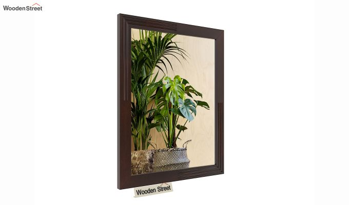 Connor Mirror With Frame (Mahogany Finish) (Mahogany Finish)-2