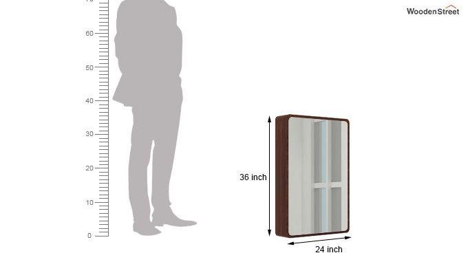 Walken Wall mounted Mini Storage Mirror (Walnut Finish)-6