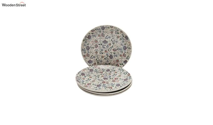 Ceramic Handcrafted Muliticolour Stoneware Dinner Plates - Set of 4-2