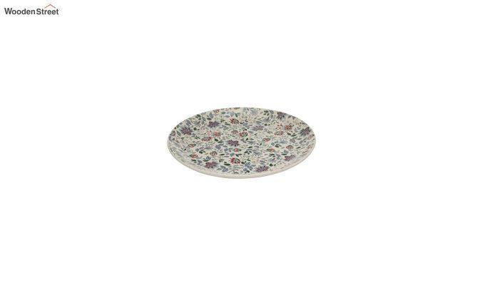 Ceramic Handcrafted Muliticolour Stoneware Dinner Plates - Set of 4-4