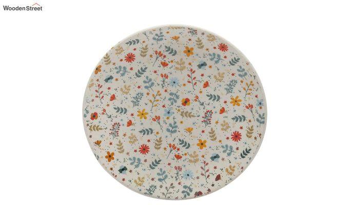Ceramic Multicolour Handcrafted Quarter Plates - Set of 4-3
