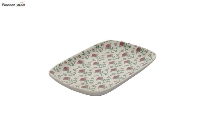 Ceramic Multicolour Rectangle Platters - Set of 2-4