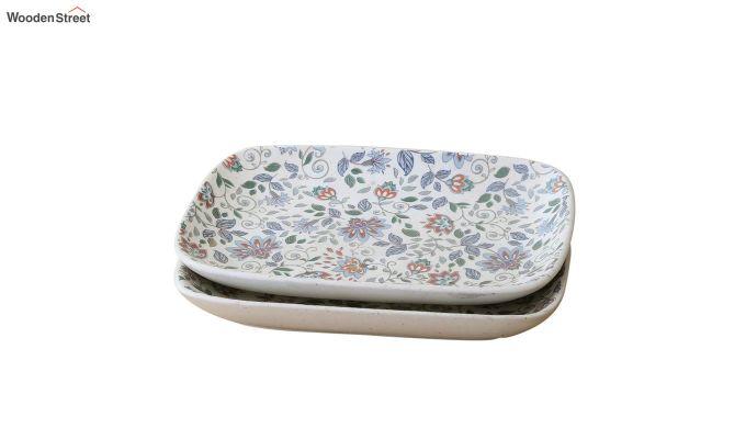 Ceramic Rectangle Multicolour Platters - Set of 2-2