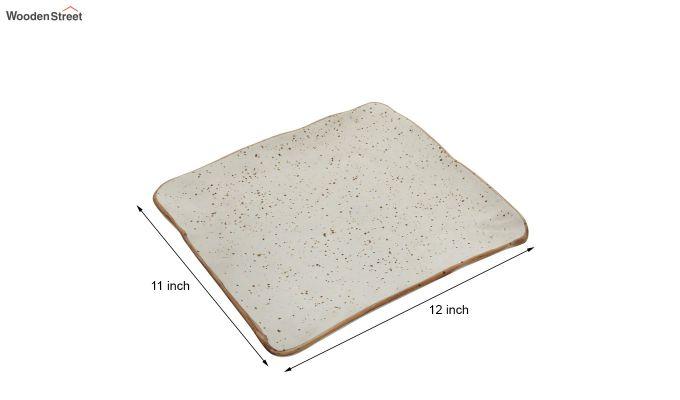 Ceramic Square Platter-5