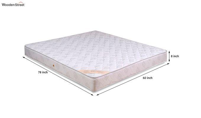 Dreamer Bonnell Spring Mattress (8 inch, Queen, 78 x 60)-6