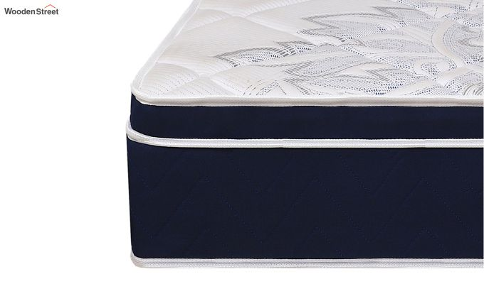 Euro Top Luxe Memory Foam Pocket Spring Mattress (10 inch, Single, 78 x 36)-4