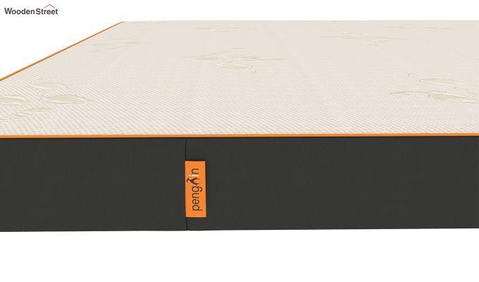 Penguin Eris 5 inch Ultra Comfort Mattress (King Size,Steel Grey)-5