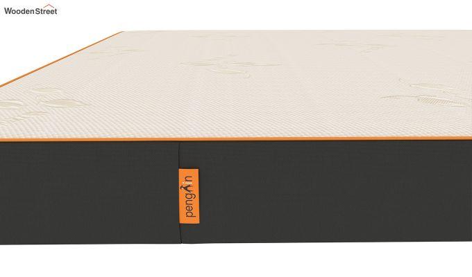 Penguin Eris 6 inch  Memory Foam  Mattress (King Size,Steel Grey)-5