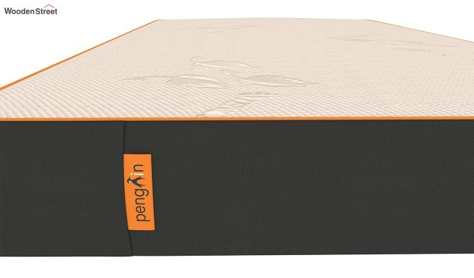 Penguin Eris 6 inch  Memory Foam  Mattress (Steel Grey)-4