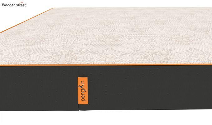 Penguin Fall 5 inch Soft Foam Queen Size Luxury Mattress (Queen Size,Steel Grey)-6