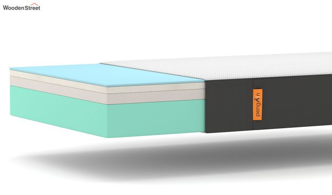 Penguin Ortho-Memory Mattress (6 inch, Single, 78 x 36)-6