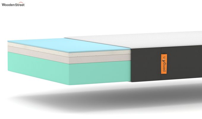 Penguin Ortho-Memory Mattress (5 inch, King Size, 78 x 72)-6