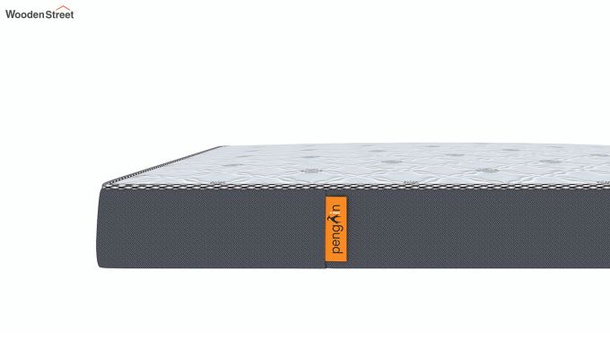 Penguin Ortho-Memory Mattress (6 inch, King Size, 72 x 72)-6
