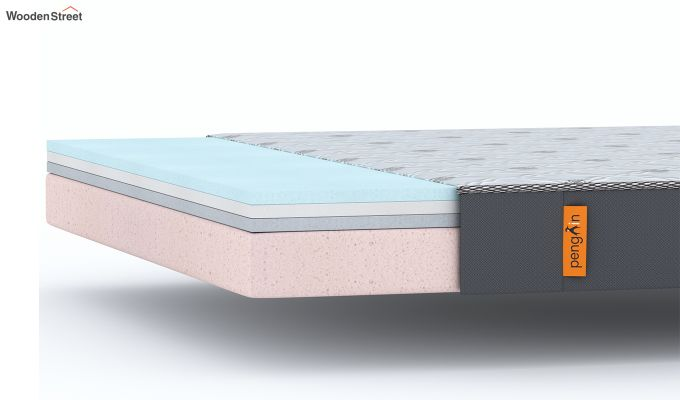 Penguin Ortho-Memory Mattress (8 inch, King Size, 72 x 72)-6