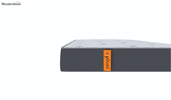 Penguin Ortho-Memory Mattress (5 inch, Single, 78 x 36)-6