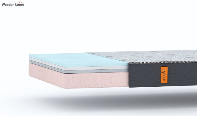 Penguin Ortho-Memory Mattress (6 inch, Single, 78 x 36)-7