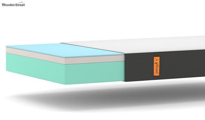 Penguin Ultra Comfort Mattress (8 inch, Queen Size, 78 x 60)-6