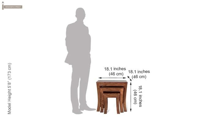 Lemna Nest Of Tables (Teak Finish)-2