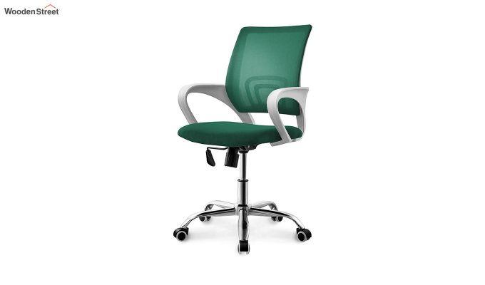 Terra Pearl Green Mesh Revolving Office Chair-1