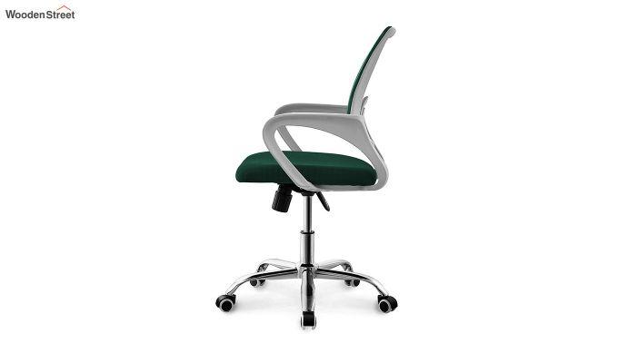 Terra Pearl Green Mesh Revolving Office Chair-2