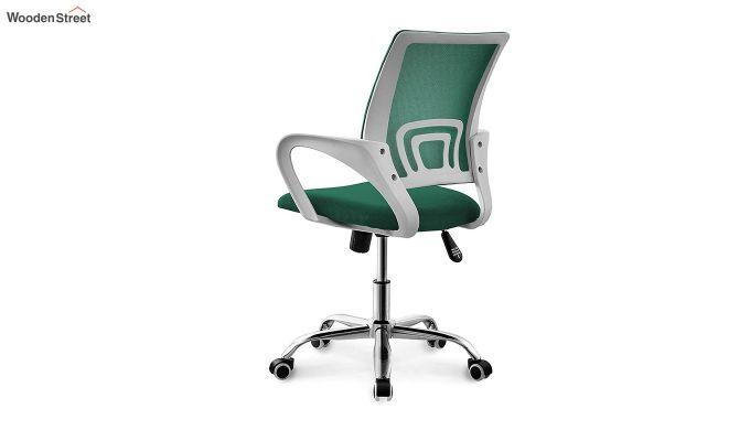 Terra Pearl Green Mesh Revolving Office Chair-3