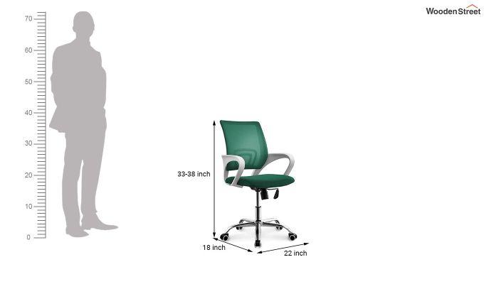 Terra Pearl Green Mesh Revolving Office Chair-4