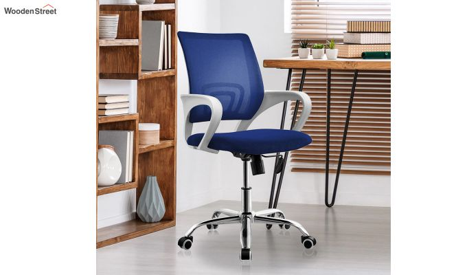 Terra Blue Mesh Revolving Office Chair-1