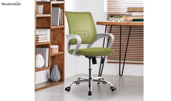 Terra Olive Green Mesh Revolving Office Chair-1