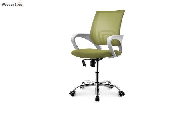 Terra Olive Green Mesh Revolving Office Chair-2