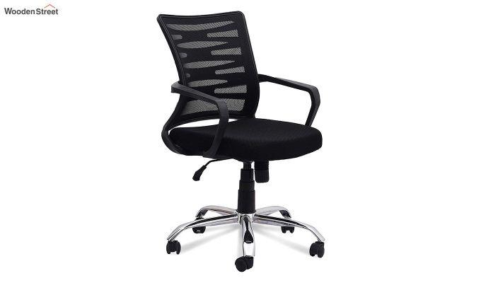 Low Back Royal Ergonomic Mesh Office Chair (Black)-1