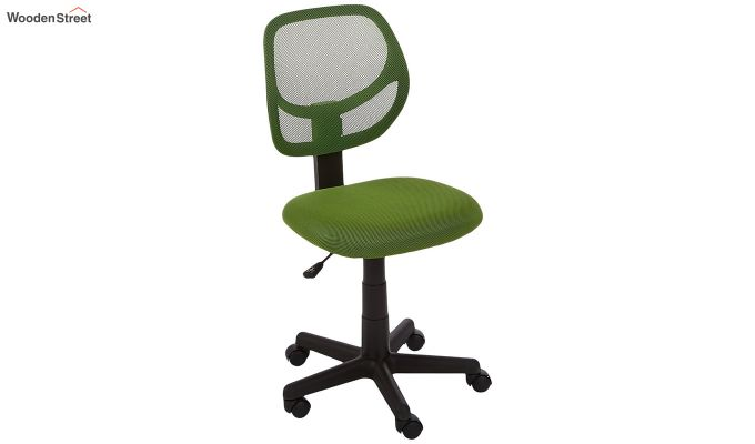Moss Low Back Computer Chair-1