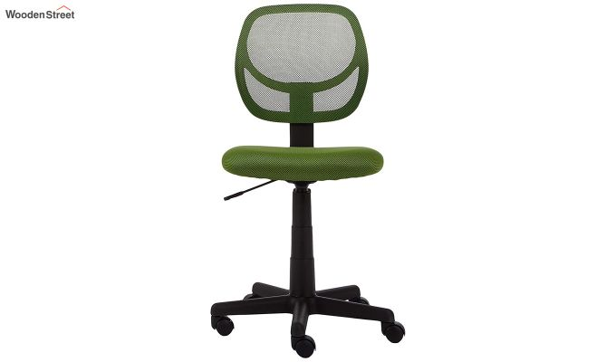 Moss Low Back Computer Chair-2