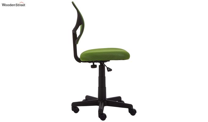 Moss Low Back Computer Chair-3
