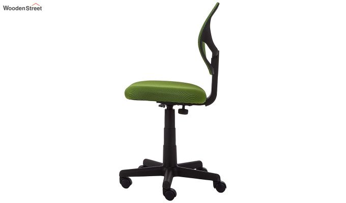 Moss Low Back Computer Chair-4