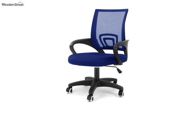 Porus  Blue Mesh Revolving Office Chair-2