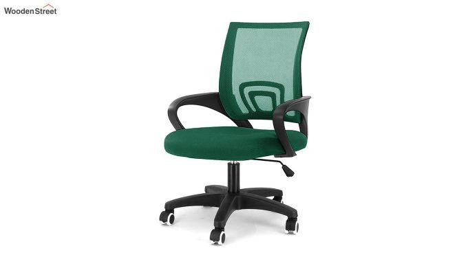 Porus Pearl Green Mesh Revolving Office Chair-1