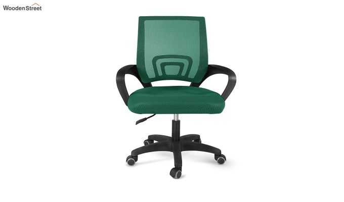 Porus Pearl Green Mesh Revolving Office Chair-2