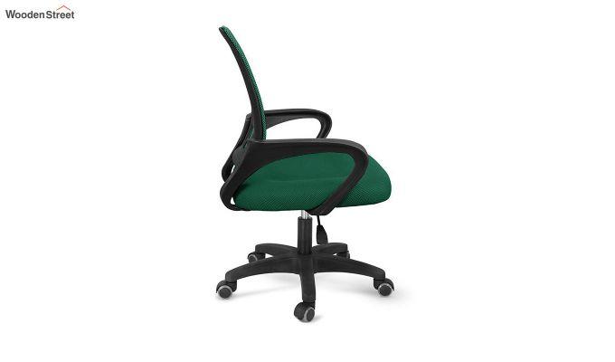 Porus Pearl Green Mesh Revolving Office Chair-3