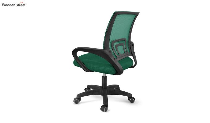 Porus Pearl Green Mesh Revolving Office Chair-4