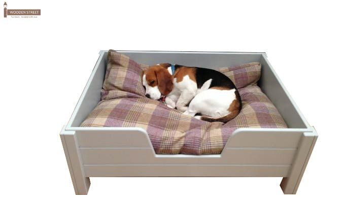 Alias Dog Bed (White Finish)-1